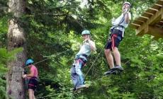 Tree climbing Outdoor Education